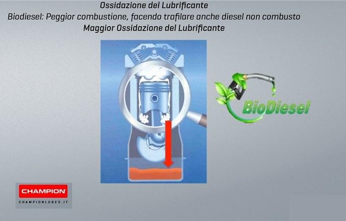 danni causati dal Bio-Diesel
